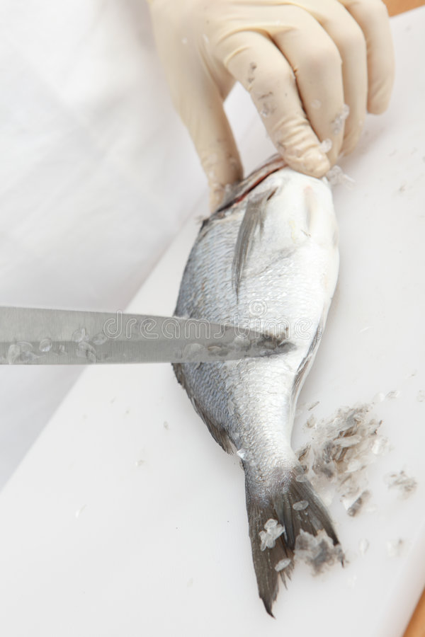 Free Fish Cleaning Stock Photos - 8735933