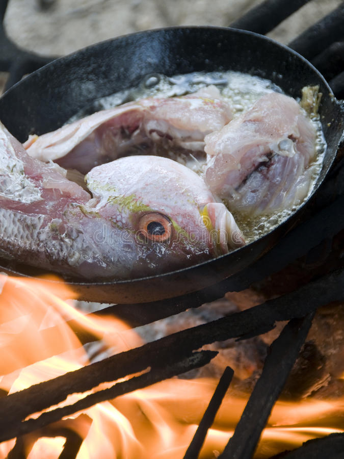 Download Fish Cooking  Wood Burning Grill Corn Island Stock Photo - Image: 23757814