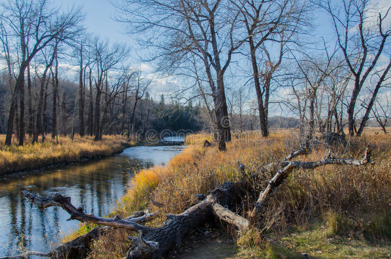 Fish Creek Provincial Park royalty free stock photography