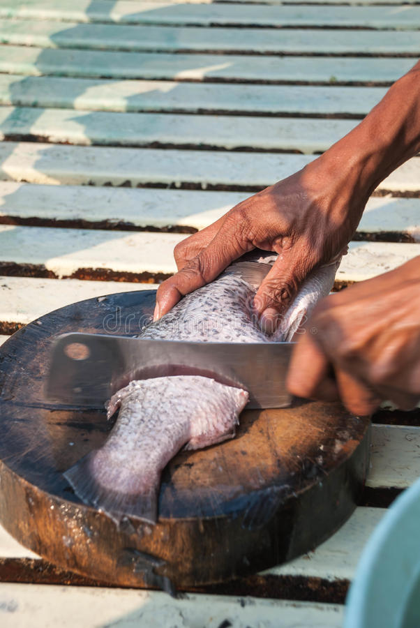 Fish cutters stock image