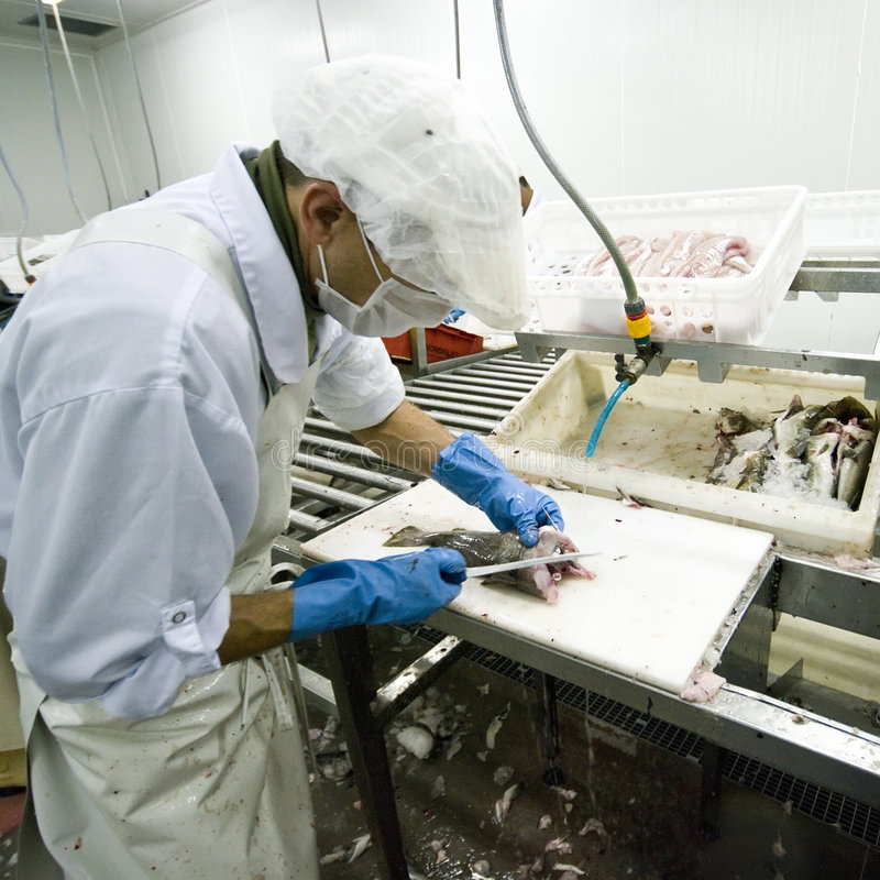 Fish cutting in manufacture stock photos