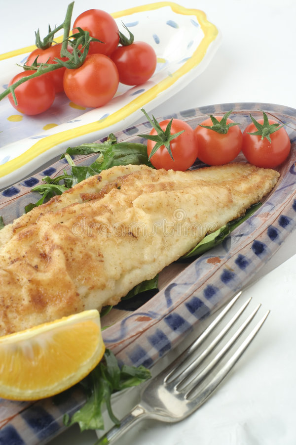 Fish dinner and salad; ceramic platters royalty free stock photography