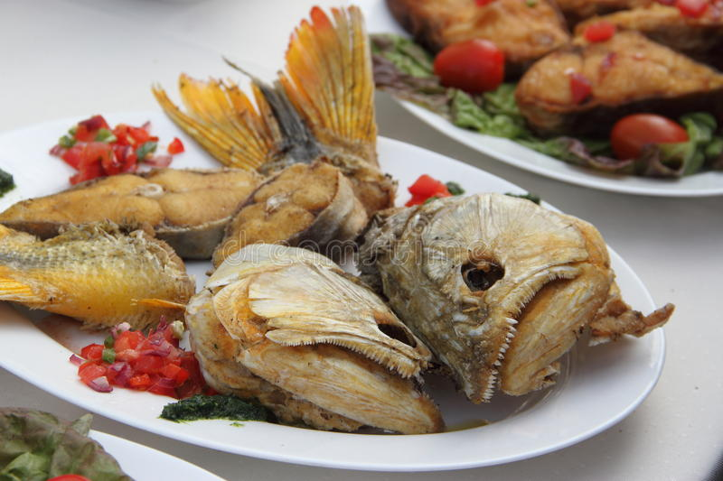 Fish dish. Roast river sin with potatoes and vegetables royalty free stock photography