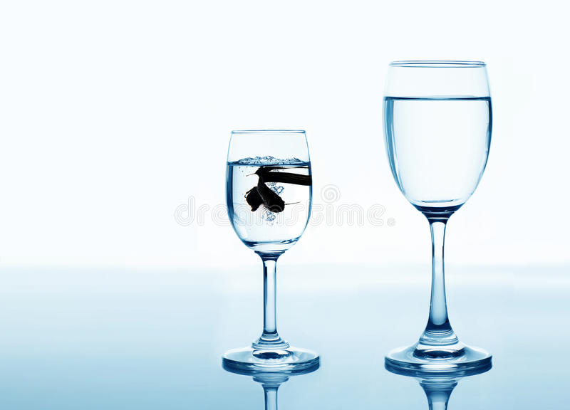Fish in drinking glass looking for rise and improvement concept stock images