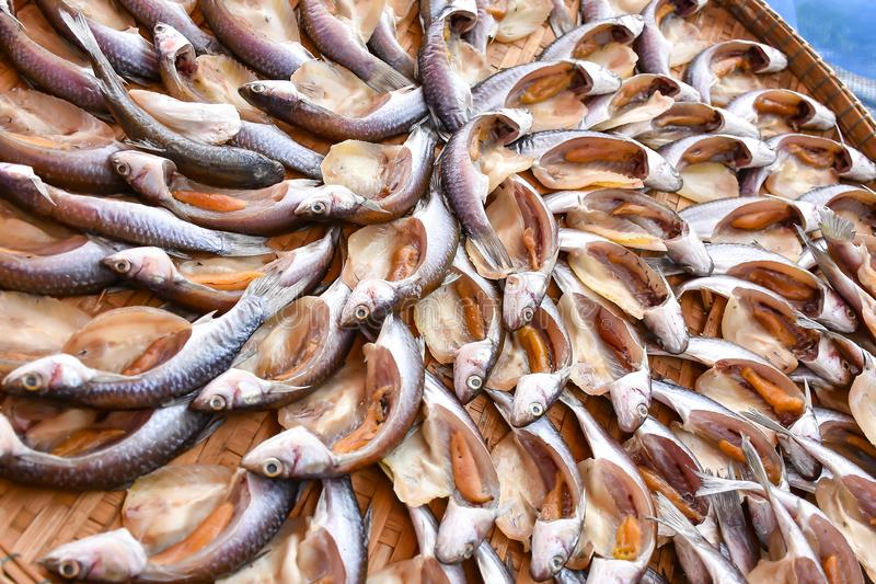 Fish drying in the sun On bamboo basket royalty free stock images