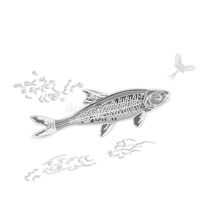 Fish and ephemera as vintage engraved vector illustration stock illustration