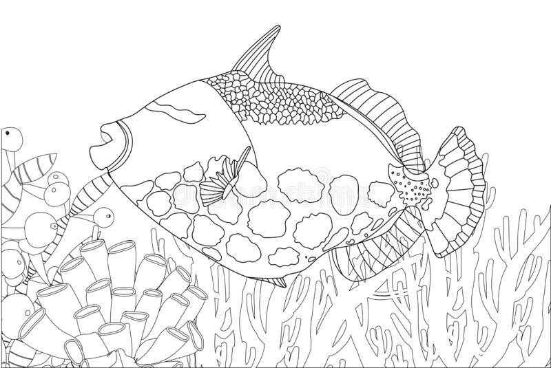 Top 15 Free Printable Sea Animals Coloring Pages Online | 535x800