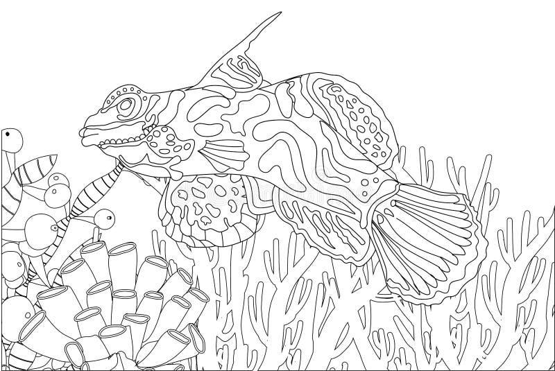 Sea Creatures Coloring Stock Illustrations – 280 Sea Creatures Coloring  Stock Illustrations, Vectors & Clipart - Dreamstime