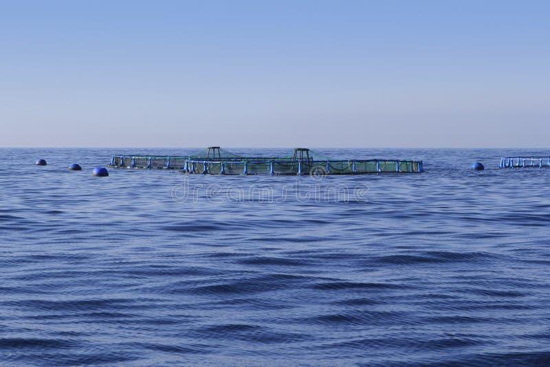 Download Fish Farm On Blue Ocean Sea Horizon Stock Photo - Image: 15840878