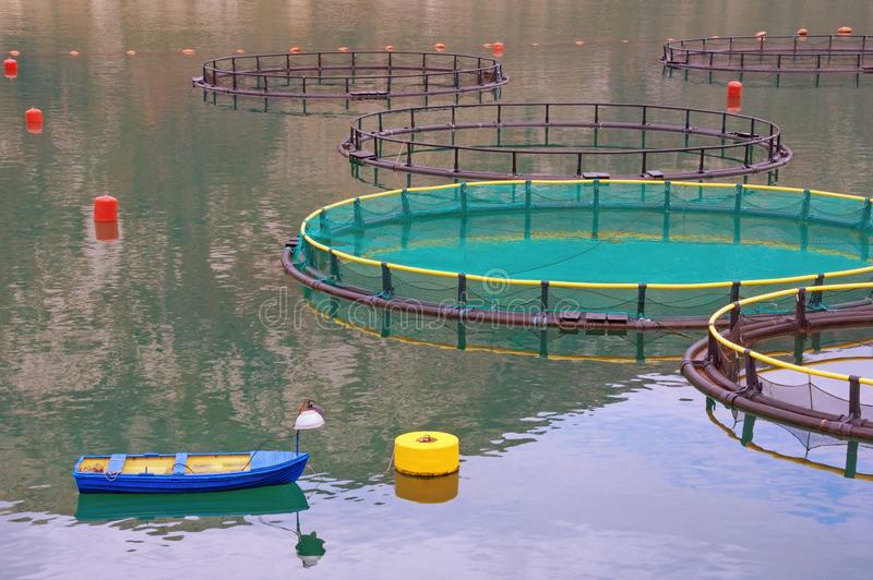 Fish farm. Cages for fishes, fishing boat. Montenegro, Adriatic Sea stock photos