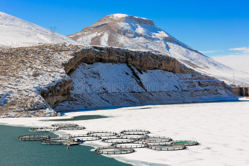 Fish farm in frozen lake stock photos