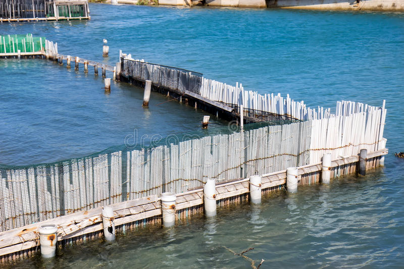 Fish farm and seagull royalty free stock photography