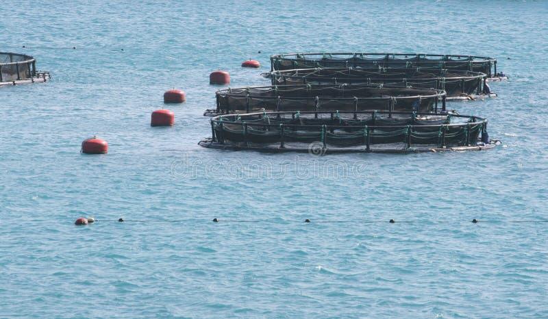 Fish farming industry stock image