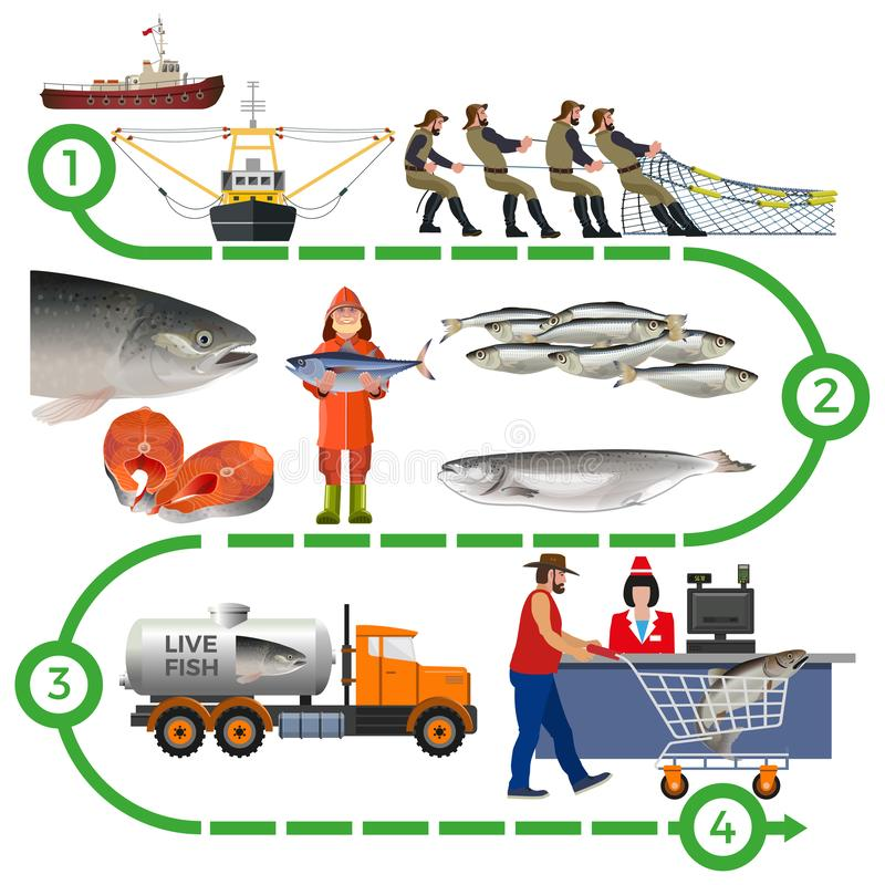 Fish farming industry. Supply chain infographic. Vector illustration isolated on white background vector illustration