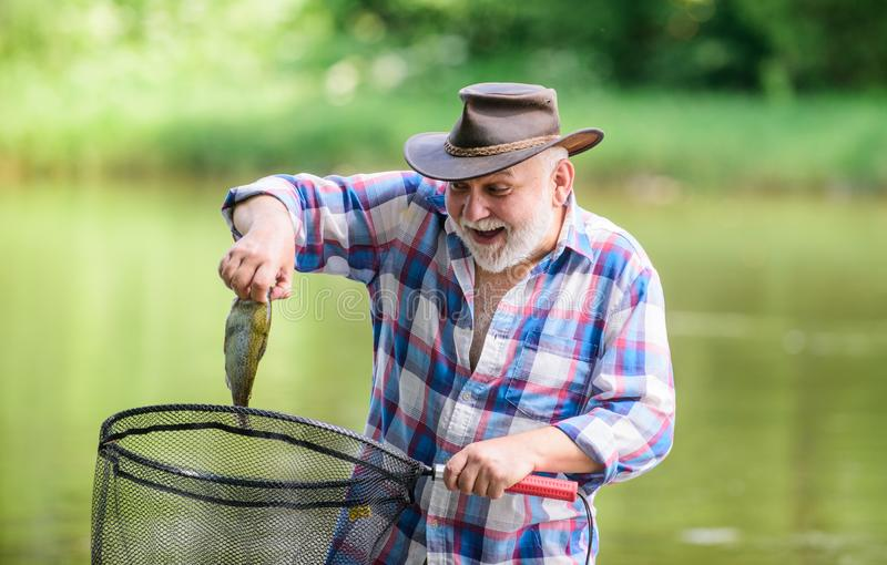 Fish farming pisciculture raising fish commercially. Fisherman alone stand in river water. Man senior bearded fisherman. Fisherman fishing equipment. Hobby royalty free stock photo
