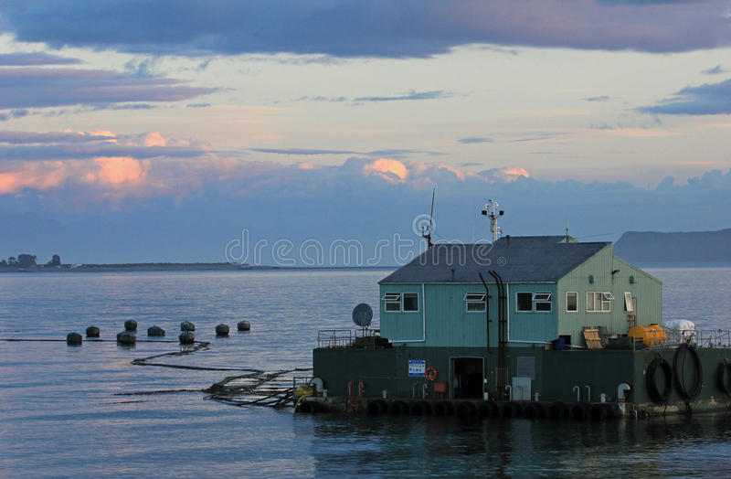Fish farms in Chiloe Island, Chile royalty free stock photo