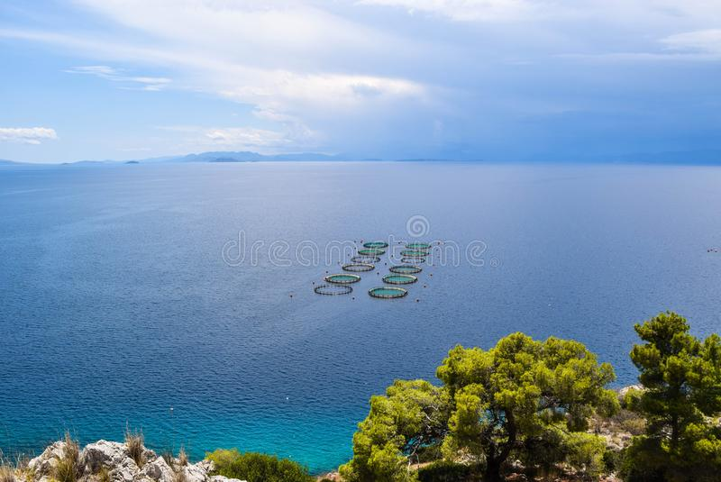 The Fish Farms. The commercially fish farms in fish ponds stock photo