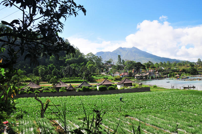Fish farms on lake Batur, Bali, Indonesia. A small fishing villages around lake Batur, the lake is a sacred site. The communities around the lake live mainly on royalty free stock photos