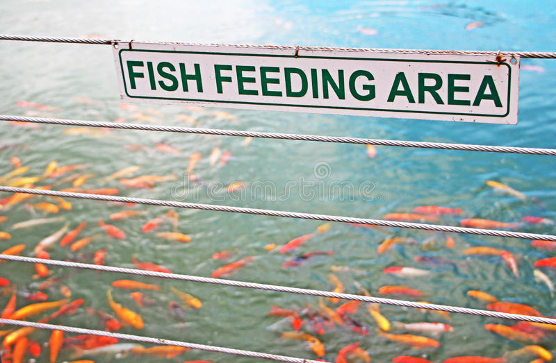 Download Fish Feeding Sign Stock Photography - Image: 20994812
