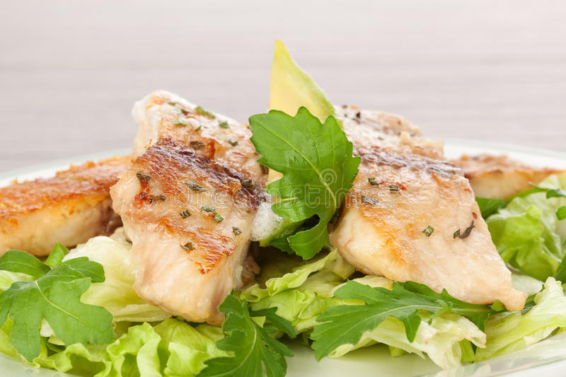 Fish fillet with fresh salad. Grilled fish fillet with white sauce and fresh rocket and lettuce salad detail. Culinary fish eating royalty free stock image