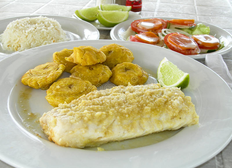 Download Fish Fillet Tostones Corn Island Nicarauga Stock Photo - Image of dinner, fresh: 18494112