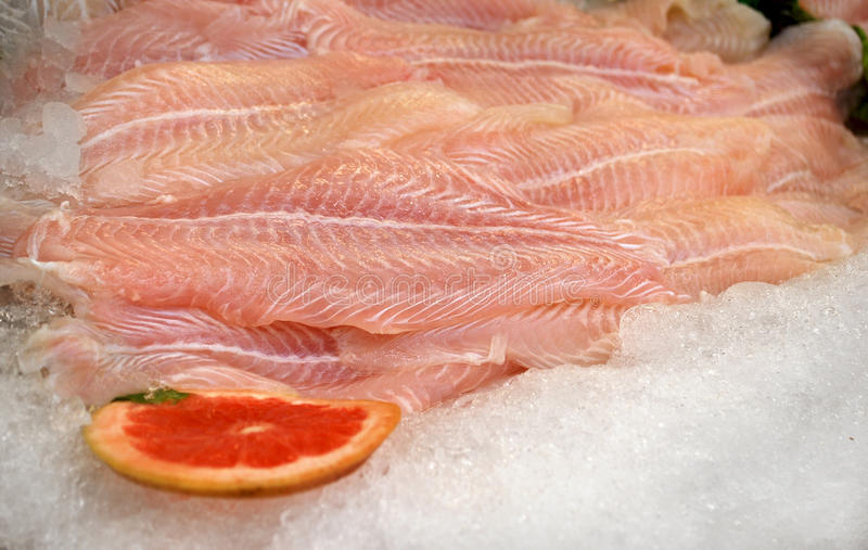 Fish fillets. Fresh fish fillets on ice stock photo