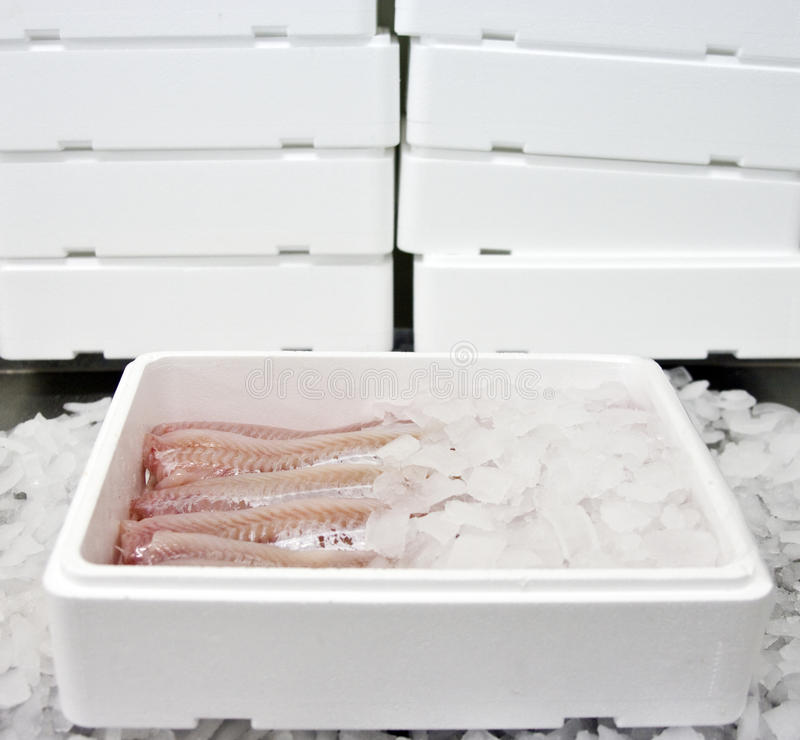 Download Fish food in box stock image. Image of food, seafood - 11402129