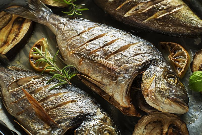 Fish food. Grilled Gilt-head bream fish with lemon herbs oil vegetables and spices royalty free stock image