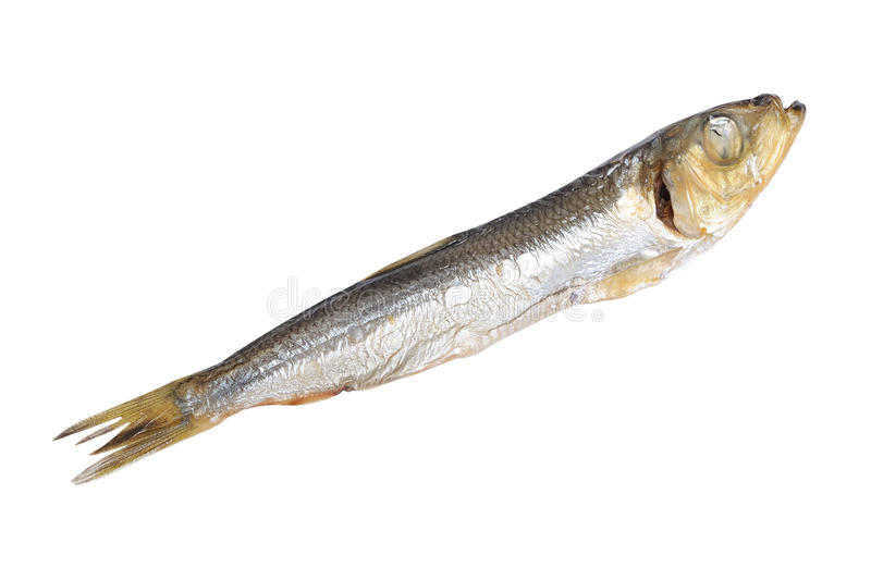 Fish food isolated