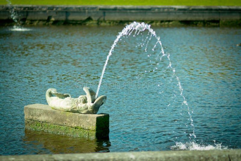 Fish fountain. In Peterhof, Russia stock photos