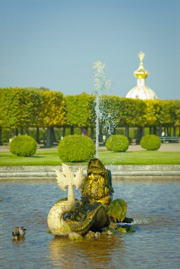 Fish fountain. In Peterhof, Russia royalty free stock image