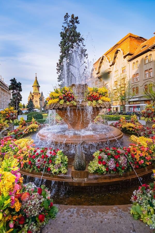 Fish fountain on the Victory Square. Piata Victoriei in Timisoara, Romania royalty free stock photography