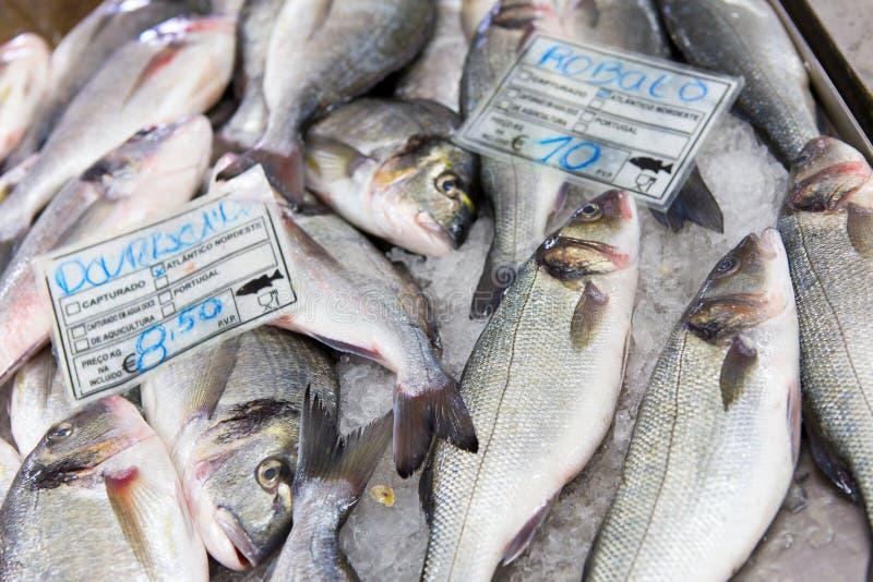 Fish. Fresh fish on display on fish market stock photos