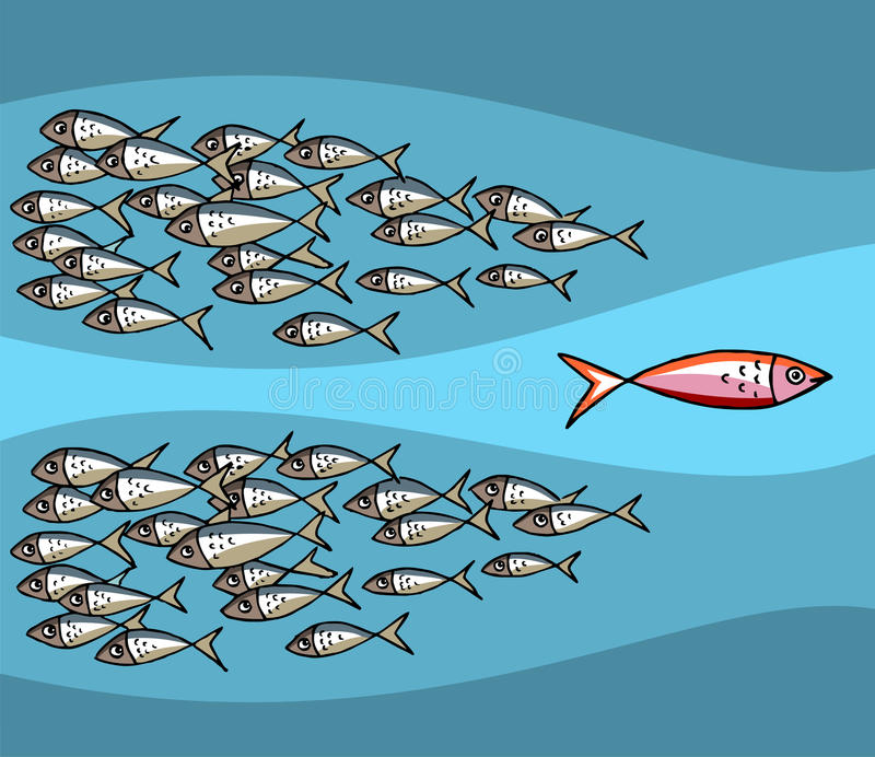 Download Fish Going Against The Tide Stock Image - Image: 10656331