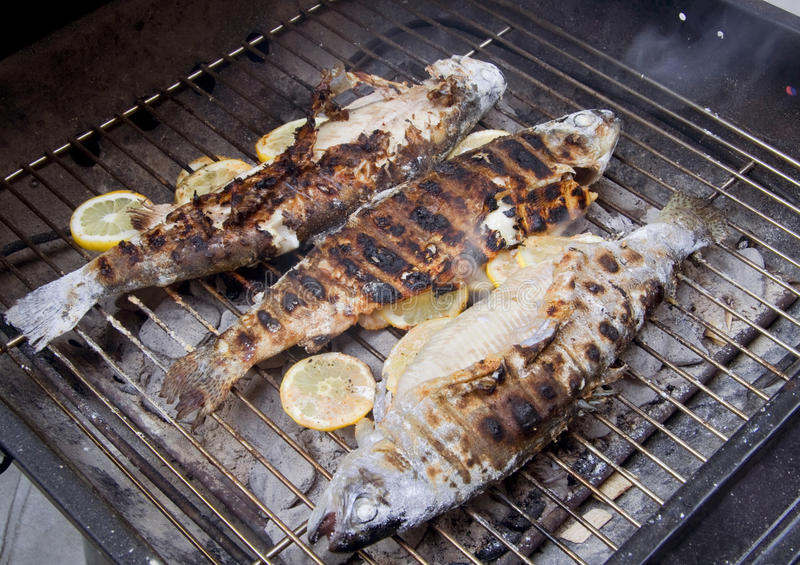 Fish on grill stock image