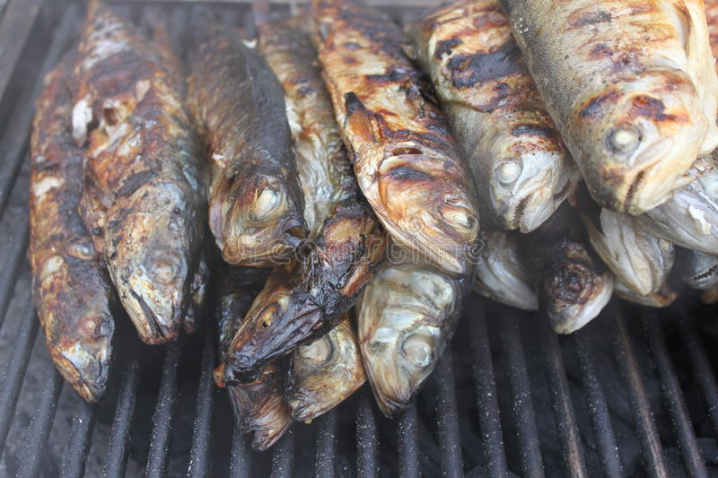 Download Trouts on the grill stock image. Image of burn, dining - 22174461