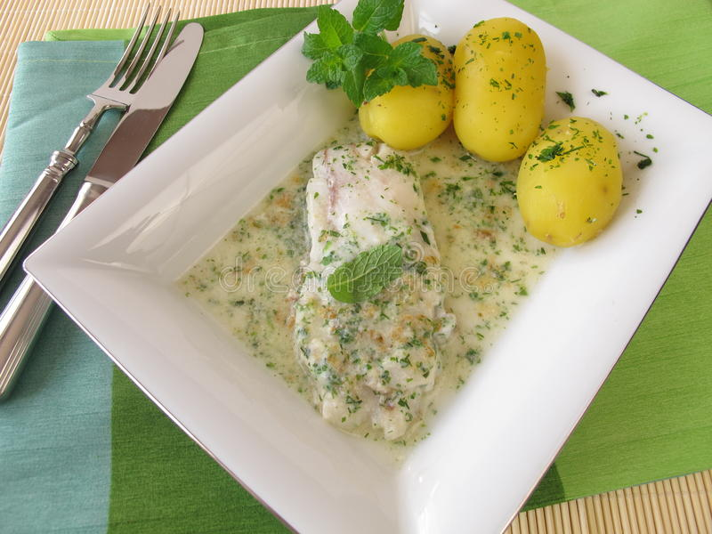 Fish on herb sauce with potatoes royalty free stock photography