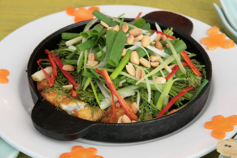 Download Fish hot plate stock photo. Image of plate, diced, peanuts - 1690746