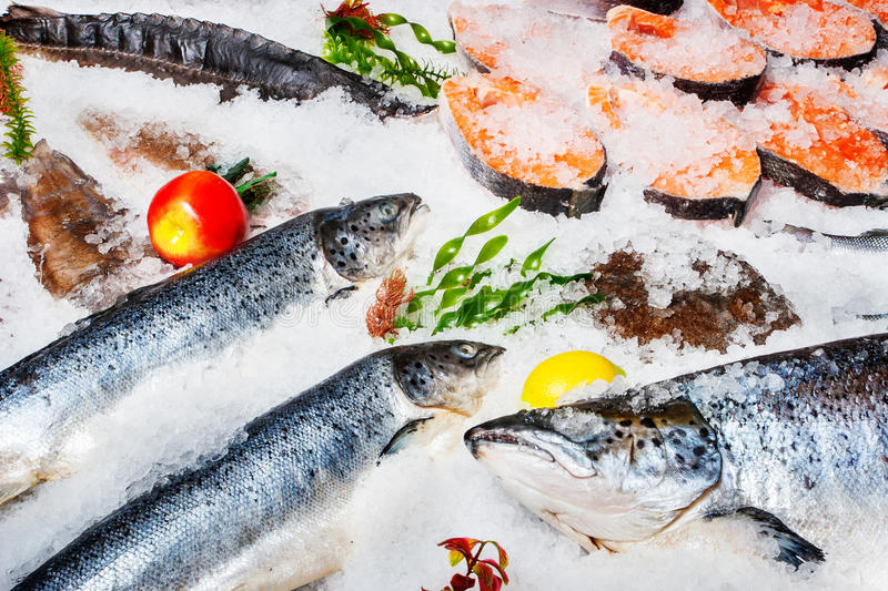 Fish on ice. Lots of Different kinds of fish on ice stock photos
