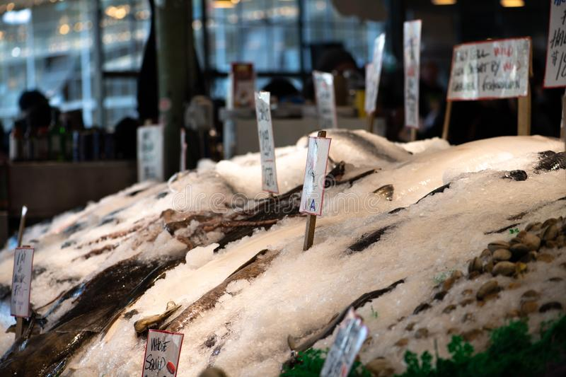Fish on ice at market. Fish on ice at an open air market with hand written sale signs royalty free stock photography