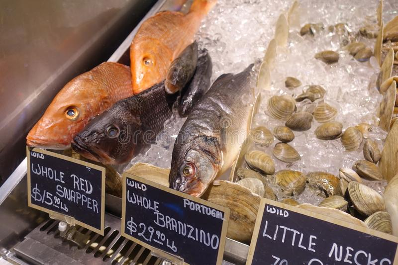 Fish on Ice for Sale at a Gourmet Market. Whole Snapper, Branzino and Little Neck Mussels on Ice for Sale at a Gourmet Market stock images