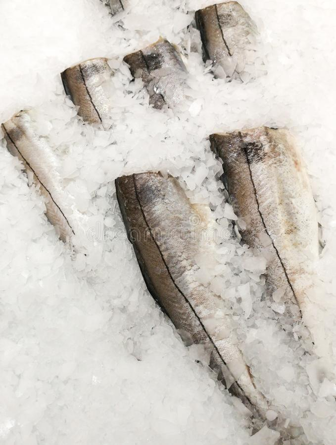 Fish in the ice in the store.  stock photos