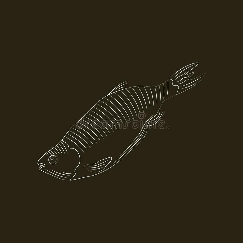 Fish icon vector isolated. Stylization by hand drawing royalty free illustration