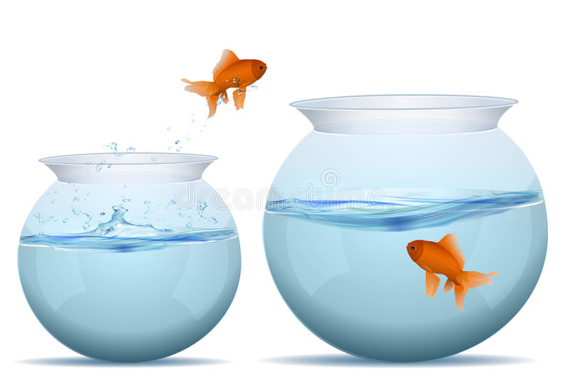 Download Fish Jumping From One Tank To Another Stock Vector - Image: 17547881