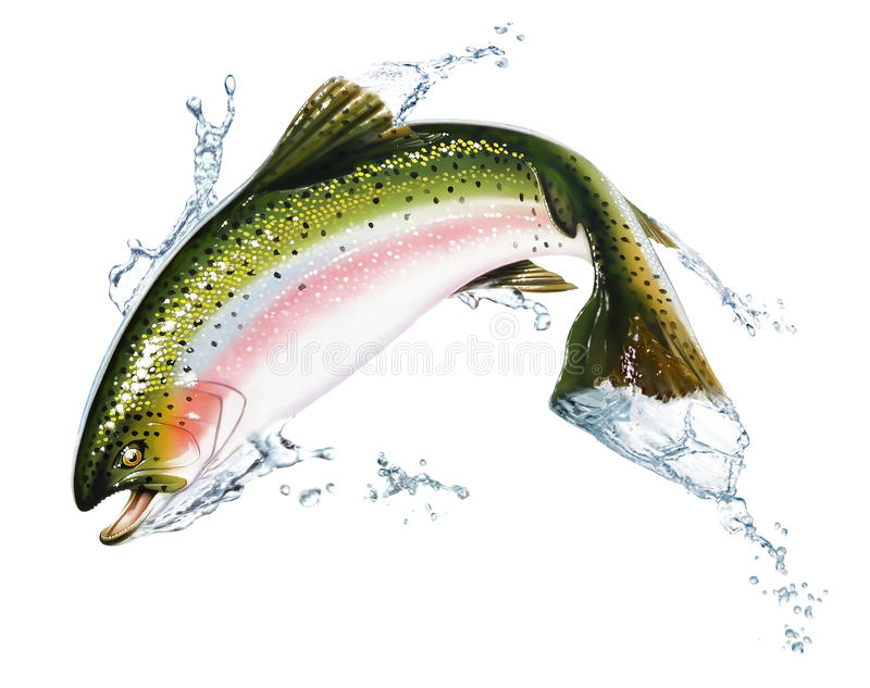 Download Fish Jumping Out Of The Water, With Some Splashes. Stock Illustration - Image: 22728928