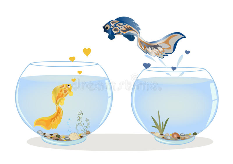 Fish jumping to his lover. Fish in love jumping to other aquarium to his beloved. Romantic feeling concept. Greeting card with Valentine`s day, the recognition vector illustration