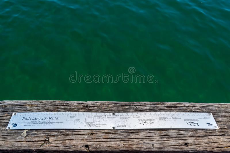 Fish length ruler. By the ocean in Frankston, Victoria, Australia stock image