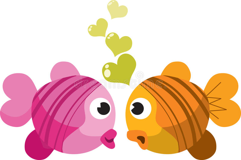 Fish in love. Two fish in love(white background