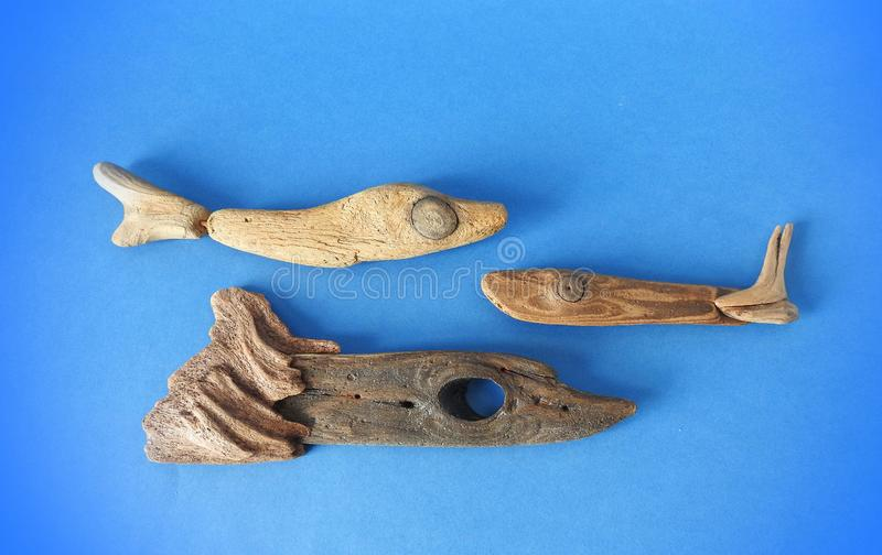 Fish made from sea wood on blue background royalty free stock photography