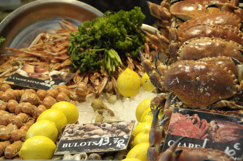 Fish market. Shot of Crustacean and shells in french fish market in saint-malo in brittany royalty free stock image